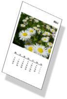 Ausschnitt Kalender